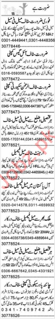Promotion Officer & Office Assistant Jobs 2021 in Peshawar