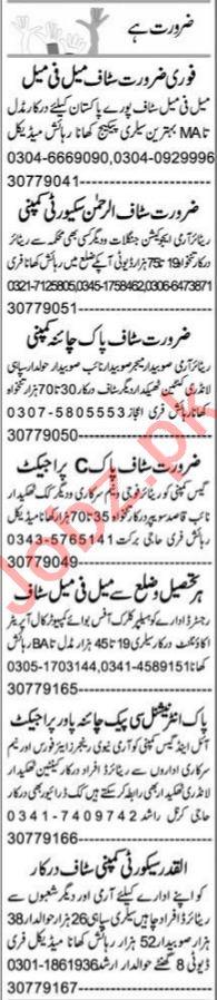Web Developer & Application Programmer Jobs 2021 in Peshawar