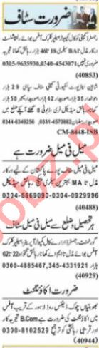Accountant & Executive Manager Jobs 2021 in Lahore
