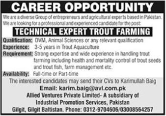 Allied Ventures Private Limited Jobs 2021
