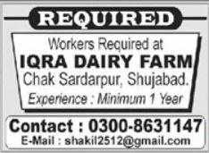 Dairy Farm Worker Jobs in Shujabad