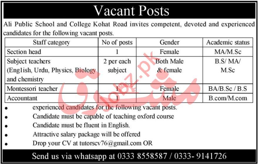 Ali Public School & College Kohat Jobs 2021 for Section Head