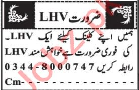 Lady Health Visitor & Doctor Jobs 2021 in Quetta