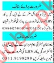 Lady Health Visitor & Lab Technician Jobs 2021 in Peshawar