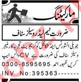 Team Leader & Regional Sales Manager Jobs 2021 in Peshawar