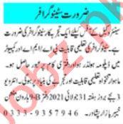 Stenographer & Computer Operator Jobs 2021 in Peshawar