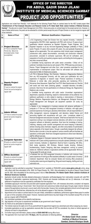Pir Abdul Qadir Shah Jilani Institute Jobs 2021