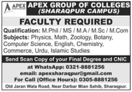 APEX Group Of Colleges Faculty Jobs 2021 In Sharaqpur Campus