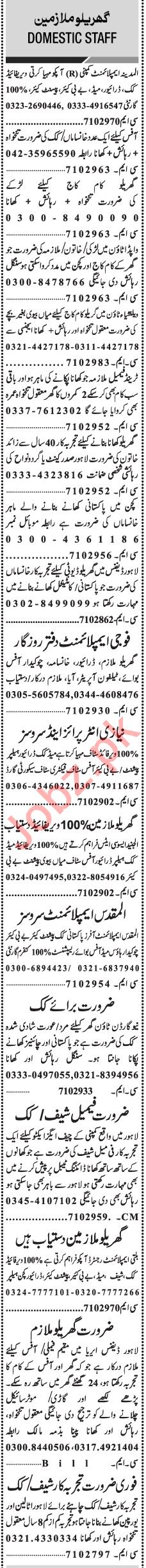 Jang Sunday Classified Ads 1st August 2021 for Domestic