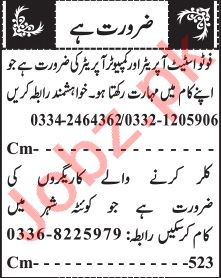 Jang Sunday Classified Ads 1st August 2021 Computer Staff
