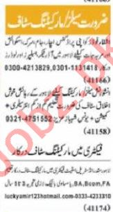 Nawaiwaqt Sunday Classified Ads 1st August 2021 for Sales