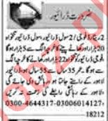 Dunya Sunday Classified Ads 1st August 2021 for Driving