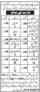 Punjab Public Development Program Jobs 2021