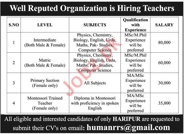 Lecturer & Teacher Jobs 2021 in Haripur