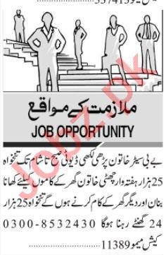 Babysitter & Batman Jobs 2021 in Karachi