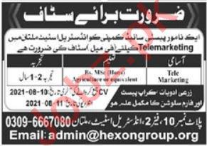Hexon Group Multan Jobs 2021 for Telemarketing Officer