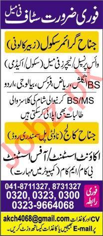 Jinnah Grammar School Zubair Colony Campus Faisalabad Jobs