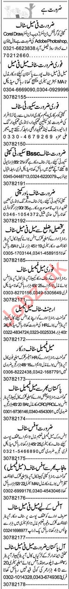 Graphic Designer & Web Designer Jobs 2021 in Faisalabad