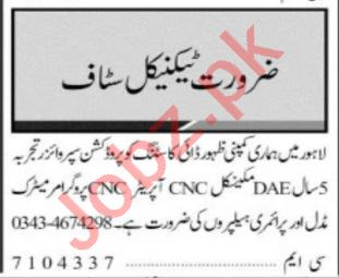 Jang Sunday Classified Ads 29 August 2021 for Technical