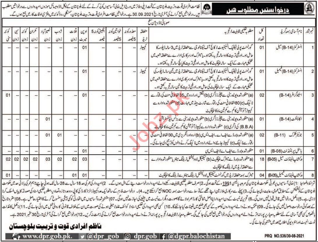 Labour & Manpower Department Quetta Jobs 2021 for Instructor