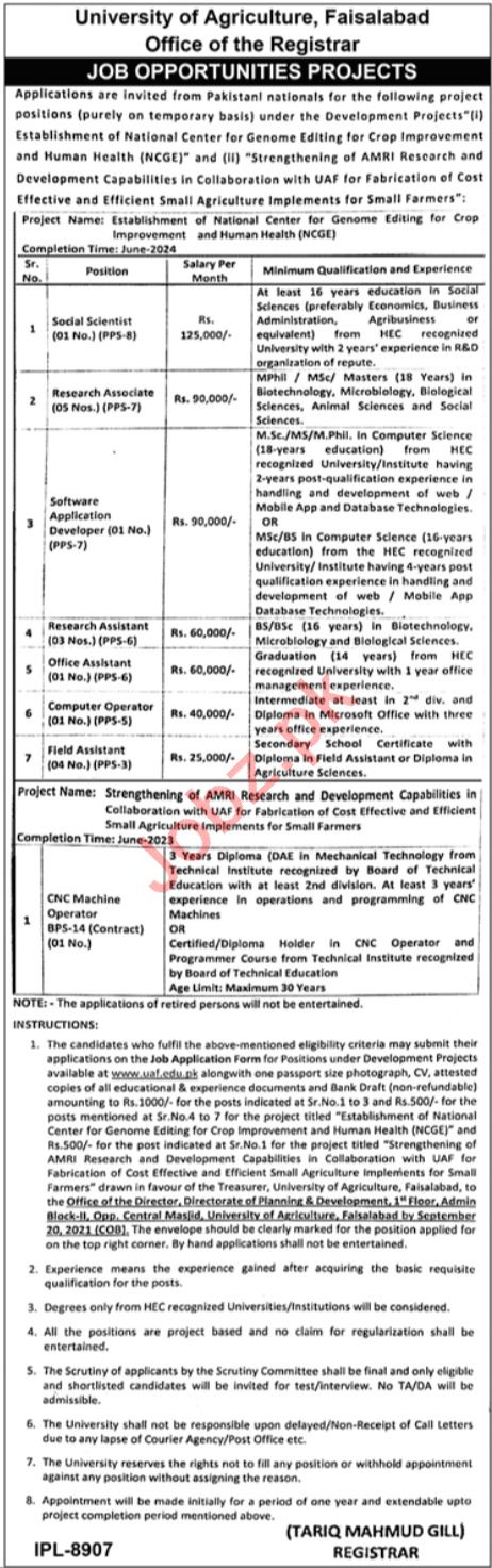 University of Agriculture Faisalabad UAF Jobs 2021 Scientist