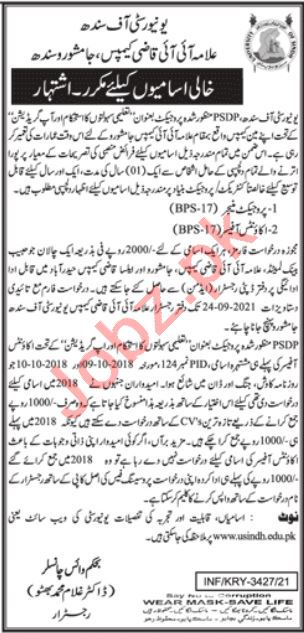 University of Sindh Jamshoro Jobs 2021 for Accounts Officer