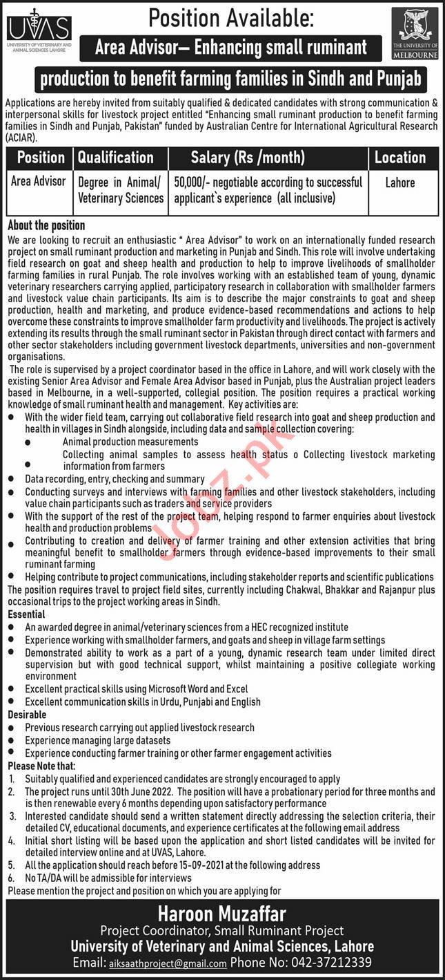 University of Veterinary & Animal Sciences UVAS Lahore Jobs