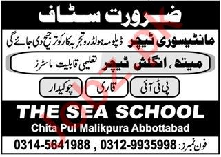 The Sea School Abbottabad Jobs 2021 for Teachers