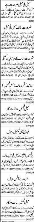 Daily Dunya Management Staff Jobs 2021 in Lahore