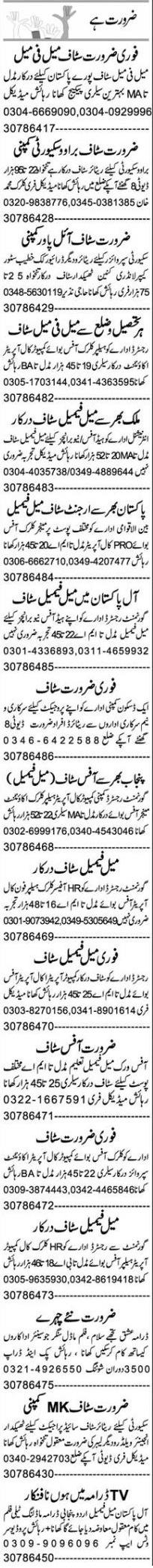 Daily Express Management Staff Jobs 2021 in Faisalabad