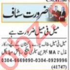 Data Entry Operator & Assistant Manager Jobs 2021 Lahore