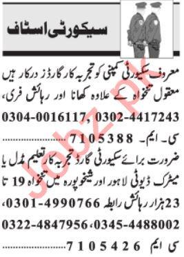 Security Executive & Security Coordinator Jobs 2021 Peshawar