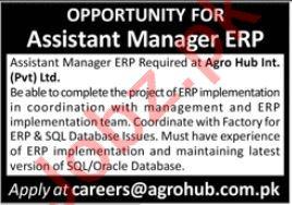 Assistant Manager ERP Job 2021 In Karachi