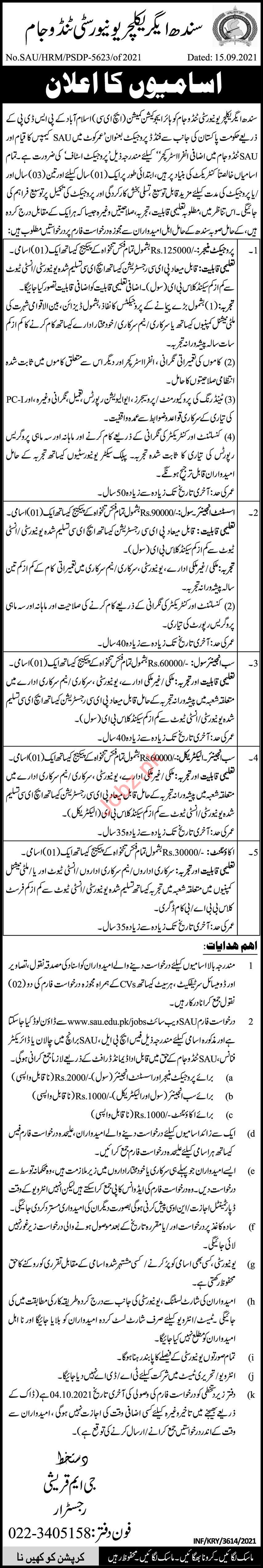 Sindh Agriculture University Jobs 2021