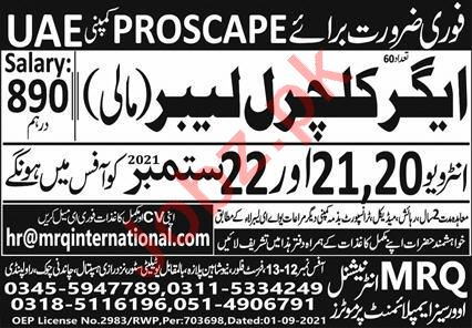 Agricultural Labor JObs in Proscape UAE