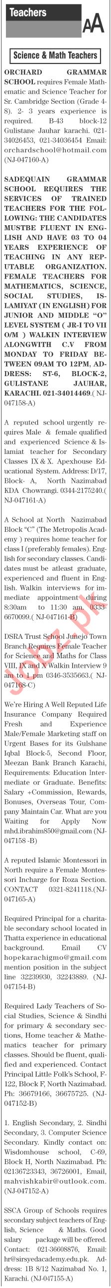 The News Sunday Classified Ads 19 Sep 2021 for Teachers