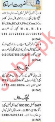 Nawaiwaqt Sunday Classified Ads 19 Sep 2021 for Educational