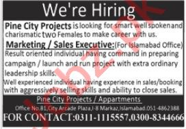 Pine City Project Islamabad Jobs 2021 for Sales Executive