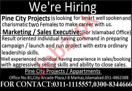 Pine City Housing Society Islamabad Jobs 2021 for Executive