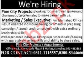 Pine City Housing Society Jobs 2021 for Marketing Executive