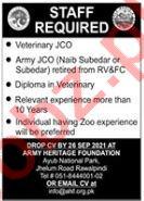 Army Heritage Foundation AHF Rawalpindi Jobs 2021 Army JCO
