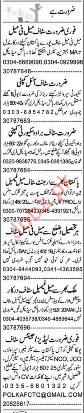 Business Manager & Executive Assistant Jobs 2021 in Peshawar