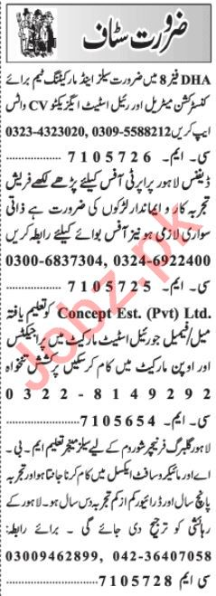 Real Estate Executive & Front Desk Officer Jobs 2021 Lahore