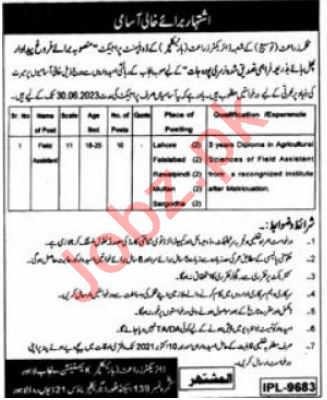Punjab Agriculture Extension Department Jobs 2021