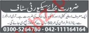 Developer Company Lahore Jobs 2021