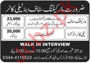 Joyland Pvt Ltd Lahore Jobs 2021