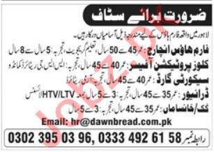 Farm House Jobs in Lahore