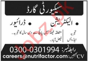 Security Guard Electrician Jobs in Faisalabad