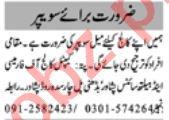 Sanitary Worker & Sweeper Jobs 2021 in Peshawar