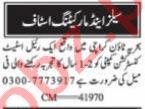 Social Media Assistant & Sales Associate Jobs 2021 Karachi